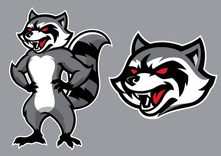 mascota de mapache en conjunto