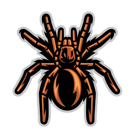 vector mascot of tarantula