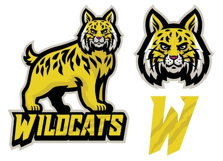 wildcat sport mascot in set bundle Ilustração