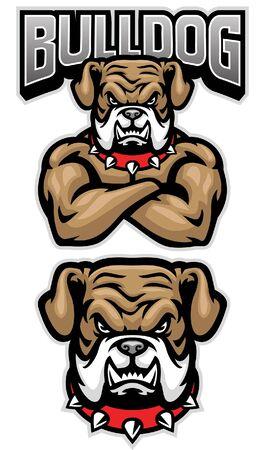 set bulldog mascot with big muscle body Banco de Imagens - 136213647
