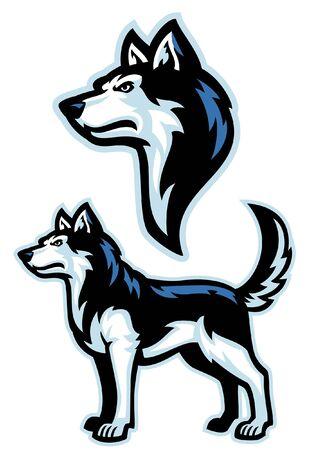 set of siberian husky dog mascot