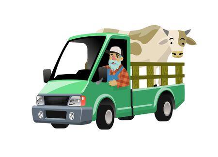 farmer driving truck transporting the livestock