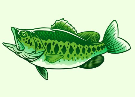 largemouth bass fish Stock Illustratie