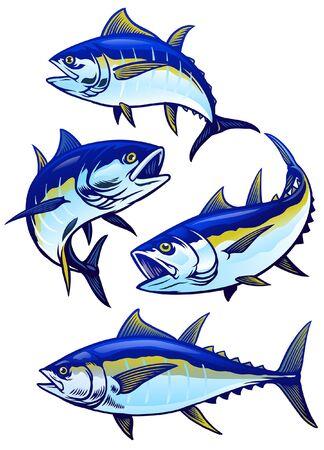 set of tuna fish illustration