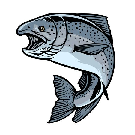 vector of hand drawing of sockeye salmon