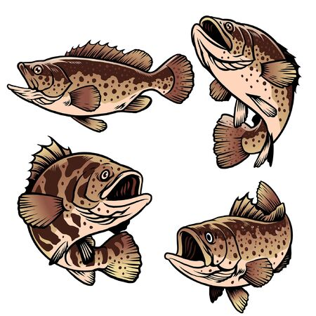 set of grouper fishing graphic