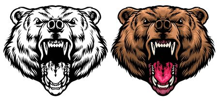 head of brown grizzly bear mascot roaring Illustration