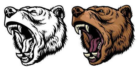 angry roaring grizzly bear vector illustration