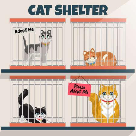 cats in the cage in the cat shelter