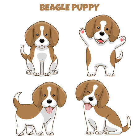 vector set of beagle dog puppy in cartoon style