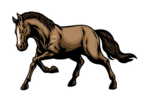 vector of brown horse in hand drawn style