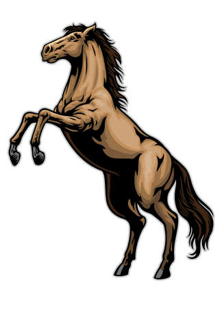 vector of standing horse in hand drawn style