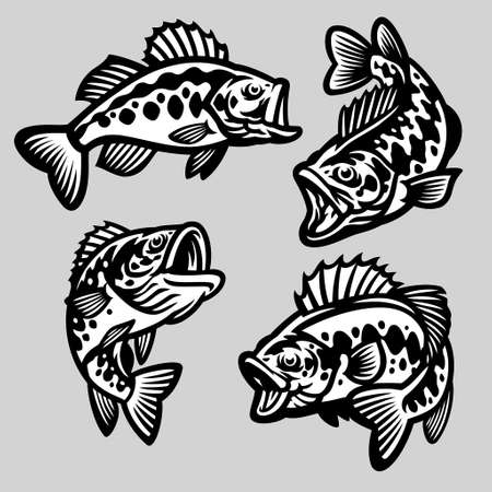 vector set of cartoon largemouth bass fish 向量圖像