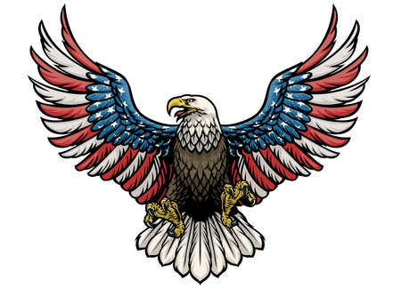 vector of eagle painted in american flag
