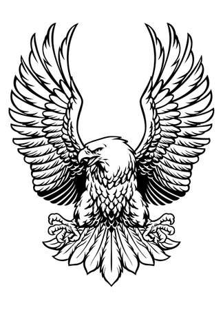 vector of black and white bald eagle spreading his wings 矢量图像