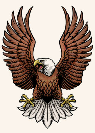 vector of angry bald eagle in hand drawn style