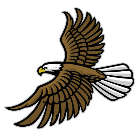 vector of bald eagle flying mascot spreading the wings 矢量图像