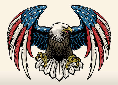 vector of bald eagle with american flag color 矢量图像