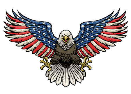 vector of american flag painted bald eagle