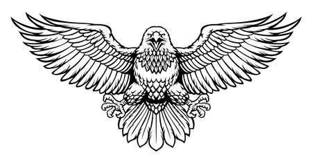 vector black and white eagle spreading the big wings