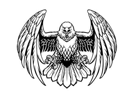 vector of black and white eagle vector in high detailed style 矢量图像