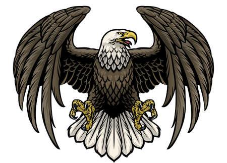 vector of hand drawn bald eagle