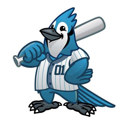 vector of blue jay baseball cartoon mascot