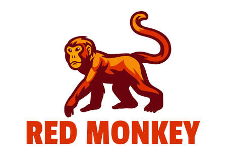 Vector of Red Monkey Mascot