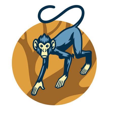 Vector of Monkey Mascot at the forest 矢量图像