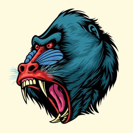 vector of Angry hand drawn of mandrill monkey head 矢量图像