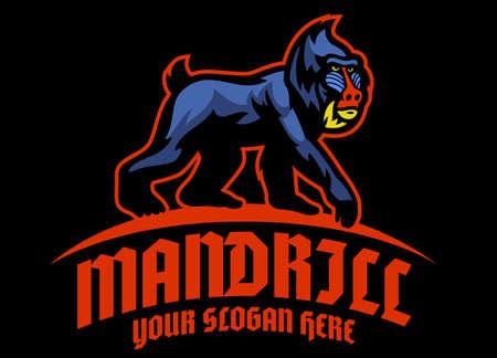 vector of Mandrill monkey  mascot