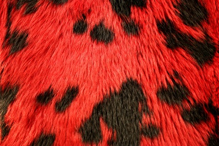 spotted fur: A high resolution image of a red spotted fur texture.