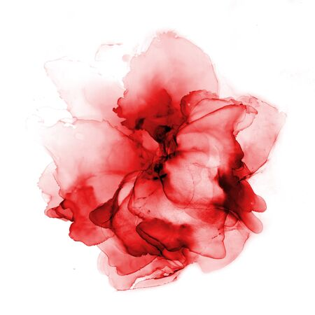 Delicate hand drawn watercolor flower in red tones. Alcohol ink art. Raster illustration. Archivio Fotografico