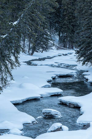 Winter stream covered  with snow. Stock Photo