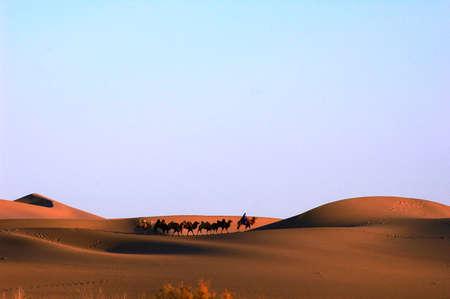 Landscape of golden desert at sunset photo