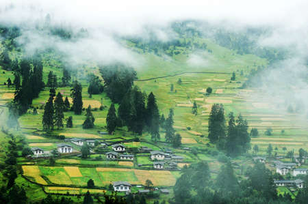 Landscape of misty fields and woods in a mountain village  photo