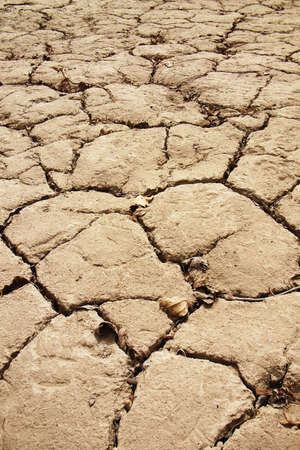 Closeup view of dried and cracked earth Stock Photo - 8575750