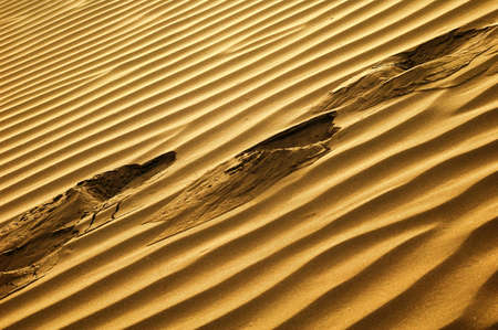 Scenery of desert textures in a sandhill Stock Photo - 8575745