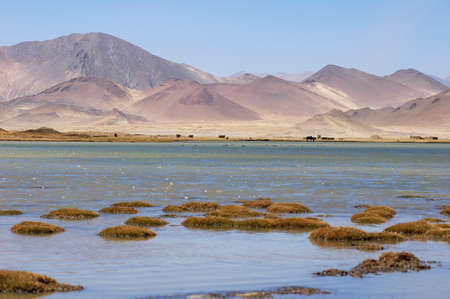Landscape of mountains and lake in Tibet Stock Photo - 8603671