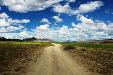 Landscape of a rough road across the fields in a sunny day Stock Photo - 9229061