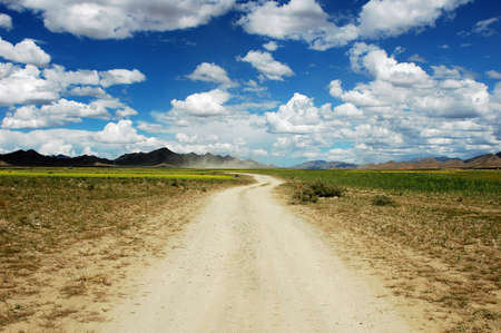 Landscape of a rough road across the fields in a sunny day Stock Photo - 9281790