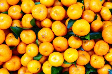 Many fresh orange fruits in piles