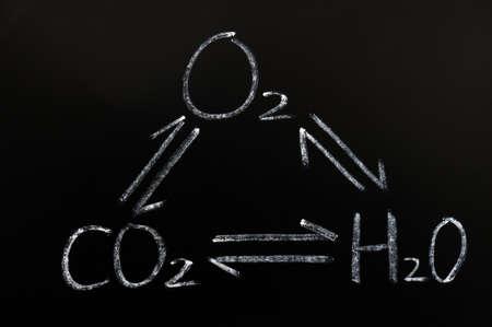 dioxido de carbono: La interacción de oxígeno, dióxido de carbono y agua en una pizarra