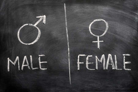 Male and female signs drawn on a blackboard photo