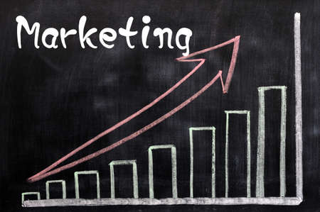 Charts of marketing written with chalk on a blackboard Stock Photo - 12825171