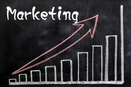 Charts of marketing written with chalk on a blackboard Stock Photo - 12825171
