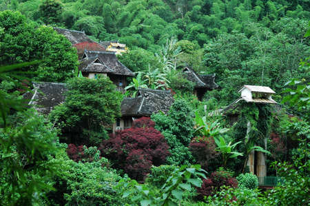 asian house plants: Landscape of a tropic village in Yunnan China