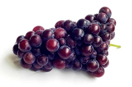 포도 수확: 흰색 배경에 잘 익은 보라색 포도의 클러스터