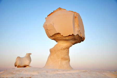 rock formations: Landscape of the famous site of White Desert in Egypt