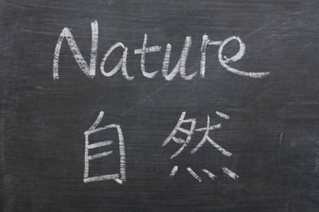 Nature - word written on a smudged blackboard with a Chinese translation photo